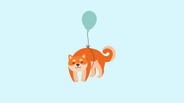 Dog Fly to The Sky